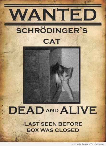 schrodinger-cat-wanted-poster-dead-alive-box