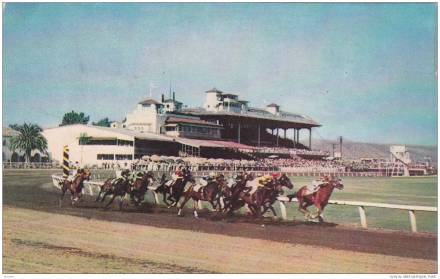 Caliente Race Track (Horses) In Tijuana Mexico, 1940-1960s