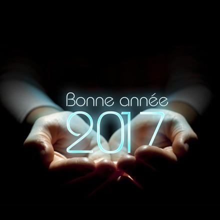 photo-montage-bonne-annee-2017-11